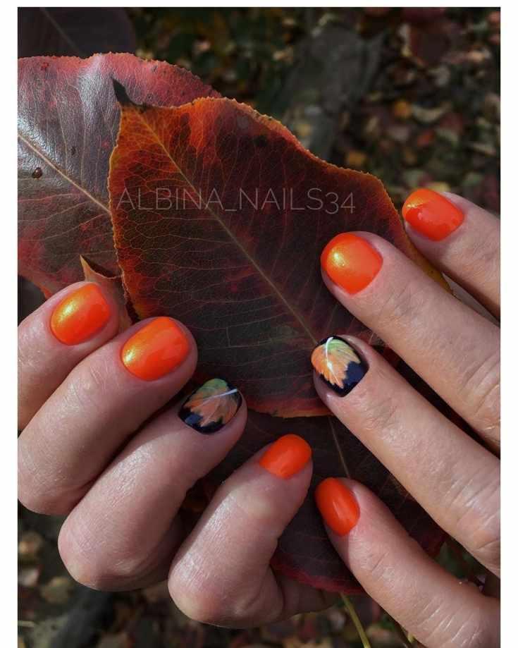 Оранжевый осенний маникюр короткий квадрат с рисунком кленового листика на черном покрытии на безымянных пальцах