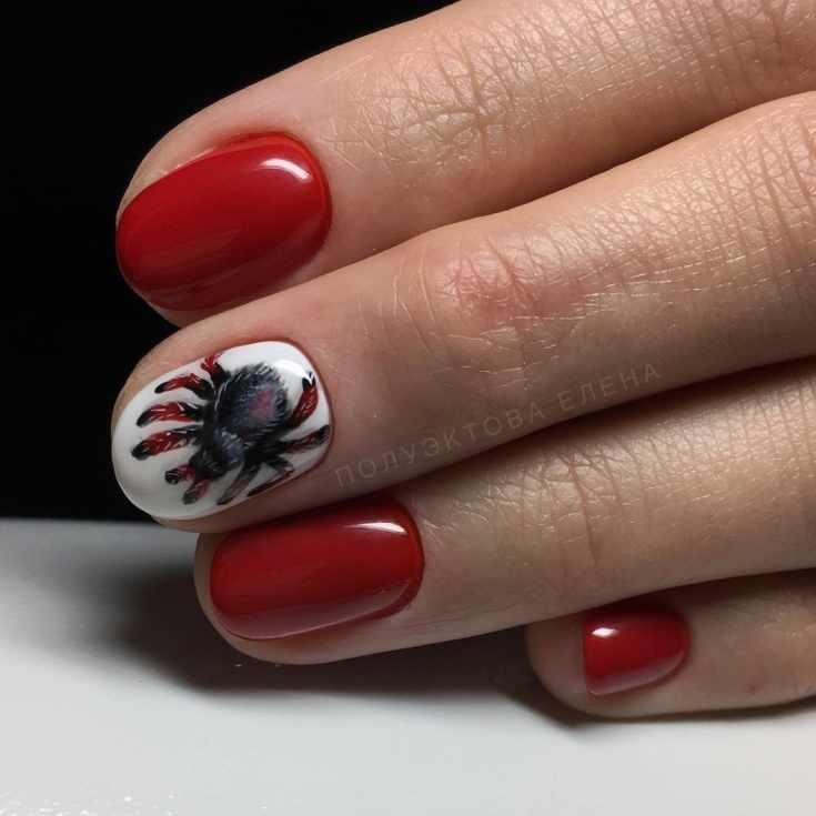 66 фото дизайн ногтей с пауками