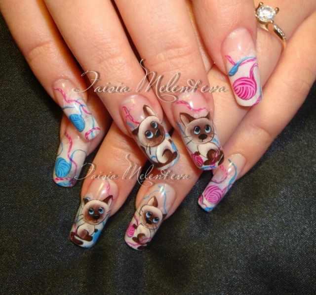 модный дизайн ногтей от чемпионов котёнок design of extension of long nails
