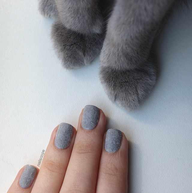 дизайн бархатных ногтей котик velvet nail design
