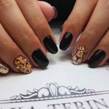 JamAdvice_com_ua_drawings-on-nails-animals-2
