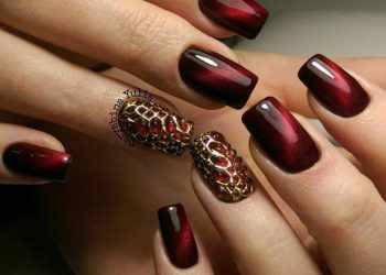 JamAdvice_com_ua_cats-eye-claret-manicure-01